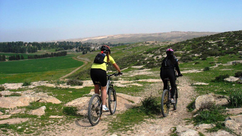 רוכבי אופניים ביער להב צילום-מ.א.בני שמעון