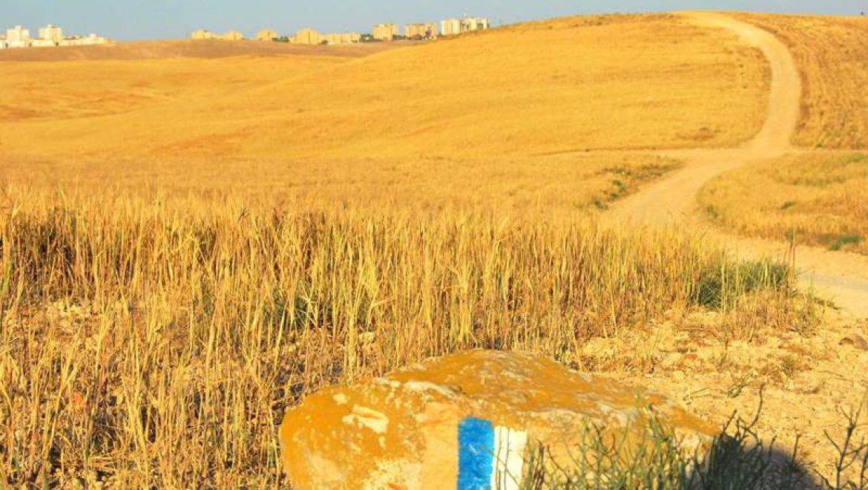 שביל ישראל לערד צילום-ענת רסקין