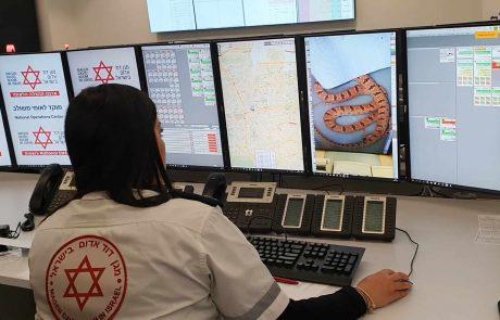 """נתוני מד""""א- עלייה משמעותית במקרי הכשות נחשים בישראל"""
