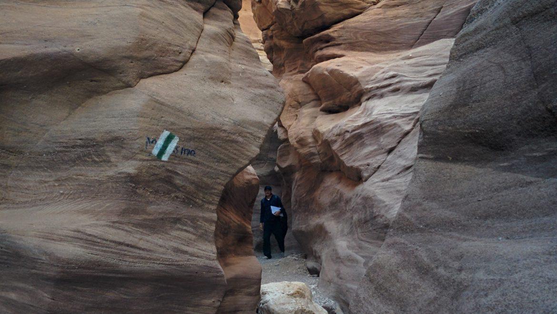 שבילים מסומנים במדבר צילום-יוני שטרן