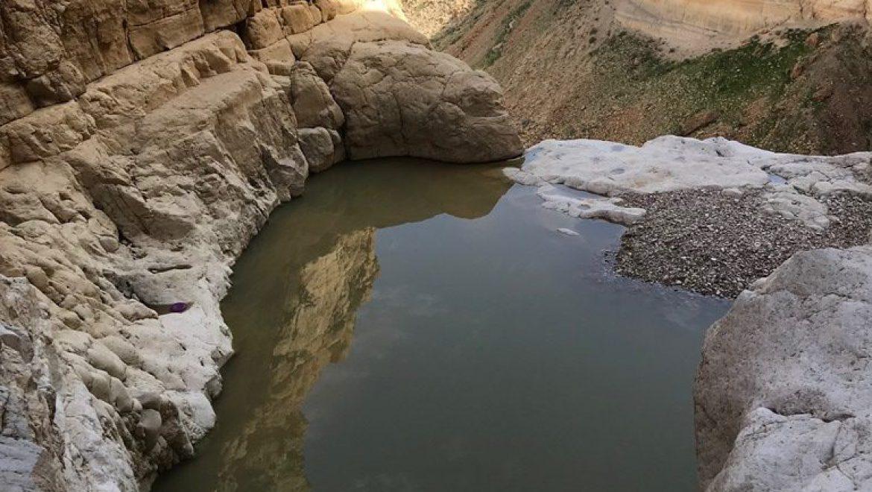 בירכת צפירה בנחל צאלים צילום-נוי רסקין