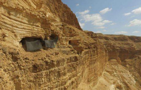 עוזי ושוד העתיקות במדבר יהודה- לא שם של סרט