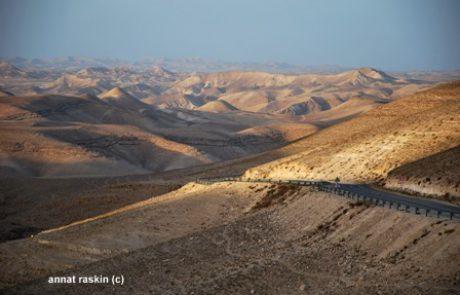 תיירות בערד – זו תיירות של אהבת המדבר