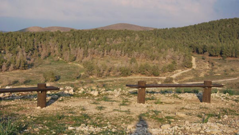 מבט מאבו חוף ליער להב צילום-ענת רסקין
