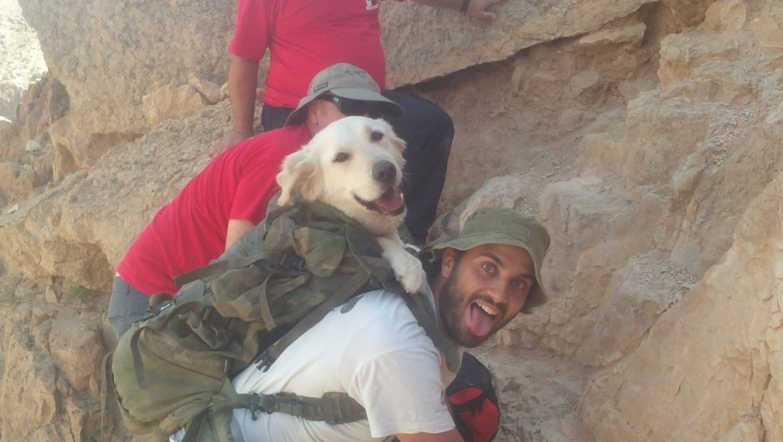 חילוץ כלב בנחל צאלים