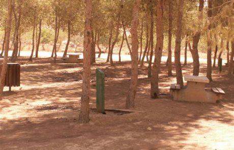 יער מיתר