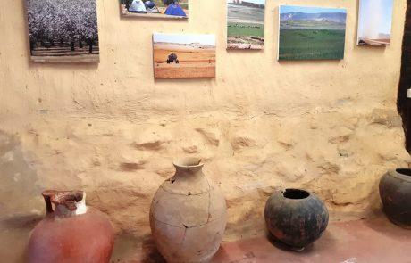תל ערד- תערוכת צילומים של האתר החשוב במעגל עונות השנה