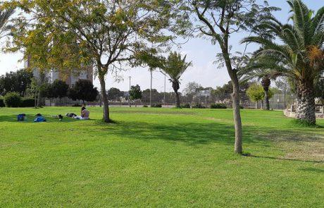 פארקים עירוניים בערד