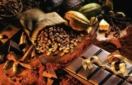 """להריח שוקולד – על """"הולי קקאו"""" מפעל בוטיק לשוקולד אורגני בישוב """"פני חבר"""" בהר חברון"""