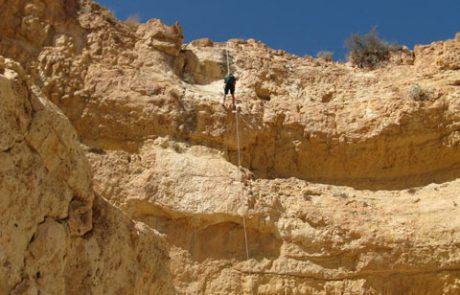 סכום סיורי סובב ערד בחול המועד סוכות 2011