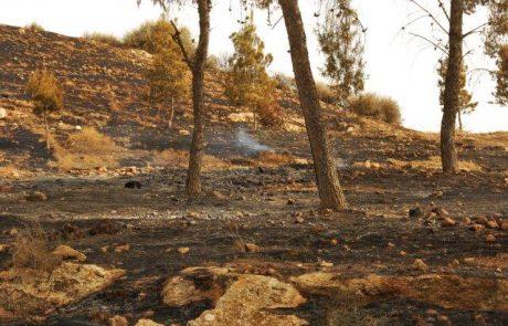 שריפה באזור יער להב כילתה כ-300 דונם
