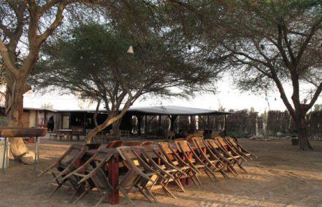אירועים בטבע- חאן שקדי מסע במדבר – נאות הכיכר