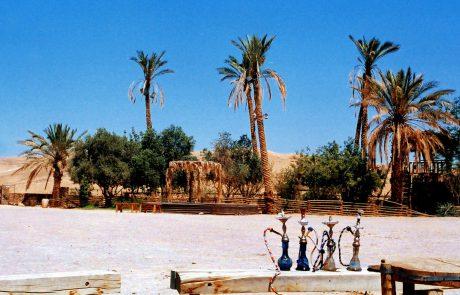 כפר הנוקדים – בקעת הקנאים במדבר יהודה