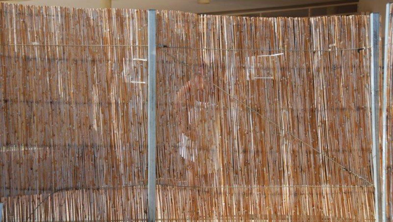 בעיית צניעות בסולריום -400 בים המלח צילום-ענת רסקין