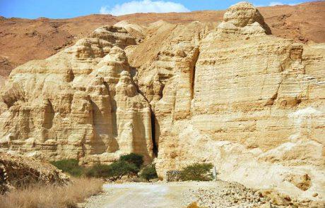 לנחל זוהר ומצד זוהר – ברכב, ברגל ובג'יפים
