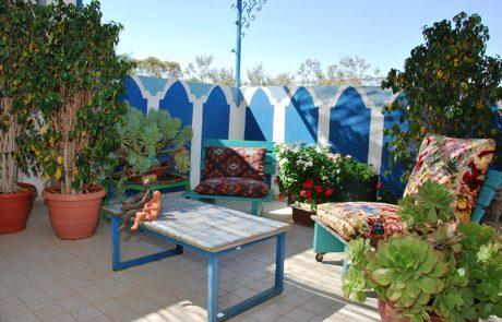 המקום של עליזה בן נר – דירת סטודיו- Aliza's zimmer