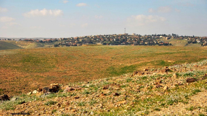 מבט לערד מהגבעות המזרחיות צילום-ענת רסקין