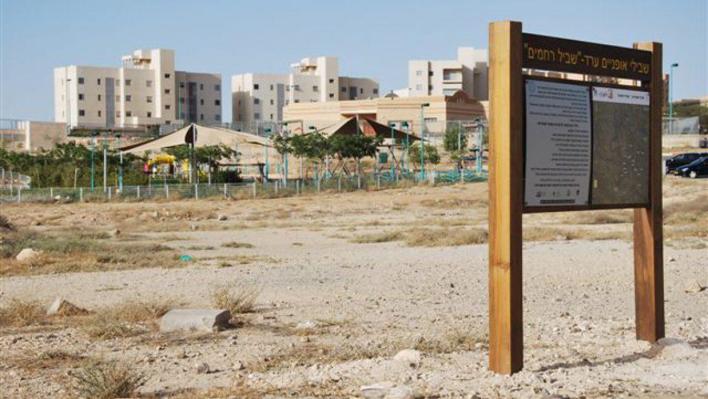 סינגל רחמים יוצא משכונת יהושפט בערד צילום-ענת רסקין
