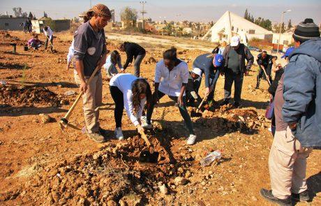נטעה חורשת המתנדב בגבעת כידוד שבערד