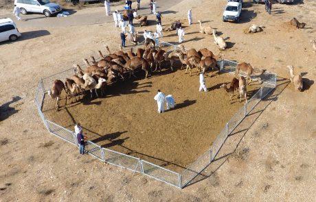 חוק הגמלים- עובר לקריאה ראשונה בכנסת